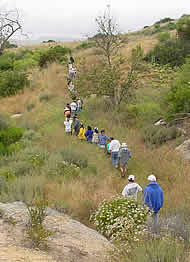 Hikers in Irvine Regional Park